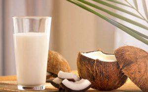 Nutrition In Coconut Milk